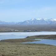 Looking South of Toolik Field Station