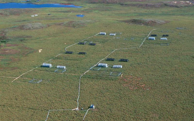 Arctic LTER Moist Acidic Tundra Experimental Plots