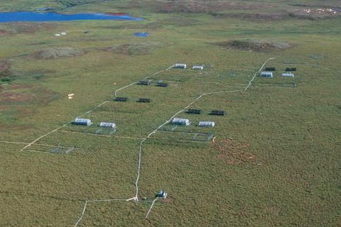 Arctic LTER Moist Acidic Tundra Experimental Plots